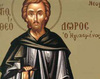 Sfantul Cuvios Teodor cel Sfintit