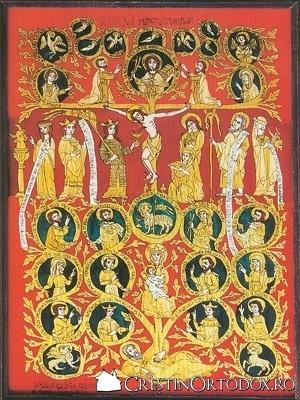Genealogia Mantuitorului - Olivia Smadu, Brasov