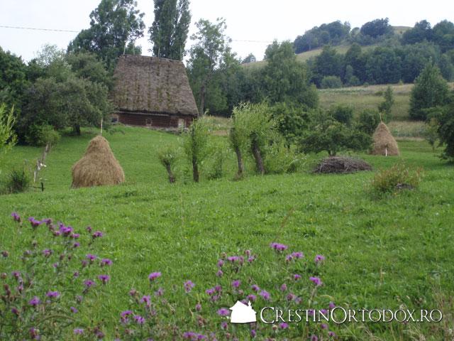 Muntii Apuseni - In drum spre Manastirea Ponor